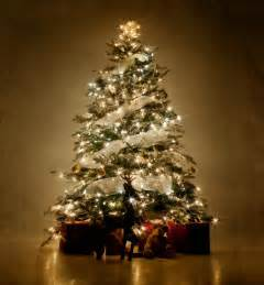 pictures of decorated trees slideshow