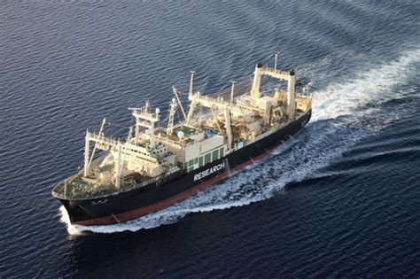 Boat Kept On A Larger Ship by Sea Shepherd Locates Japanese Whaling Factory Ship Pete