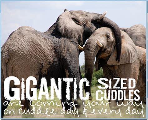gigantic cuddles coming cuddle day ecards