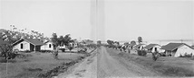 Fordlândia: Henry Ford's Failed Rubber Town in the Amazon ...