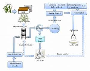 Optimization Of Sulfide  Sulfite Pretreatment Of