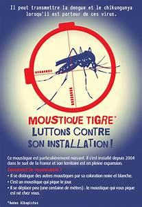 Qu Est Ce Qui Attire Les Moustiques : luttons contre le moustique tigre marennes net ~ Voncanada.com Idées de Décoration