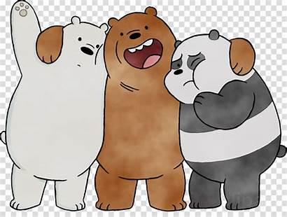 Bear Polar Cartoon Bears Bare Clipart Snout