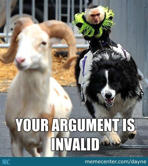 Border Collie Meme - a monkey riding a border collie chasing a goat by dayne meme center