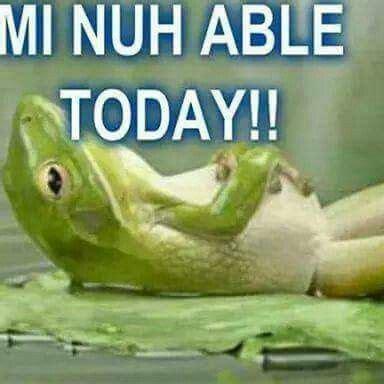 jamaican memes images  pinterest caribbean