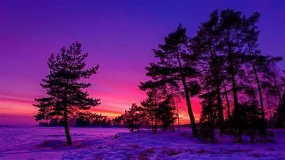 Screensavers Winter Sunset Wallpapers Screensaver Sfondo Kb