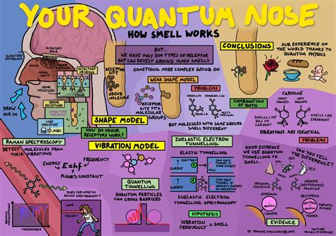 quantum nose poster  flickr  poster describes