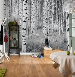 home interior shopping home décor mirrors clocks area rugs the mine