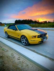 2005 Yellow Mustang Convertible in 2020 | Yellow mustang, Mustang convertible, Mustang