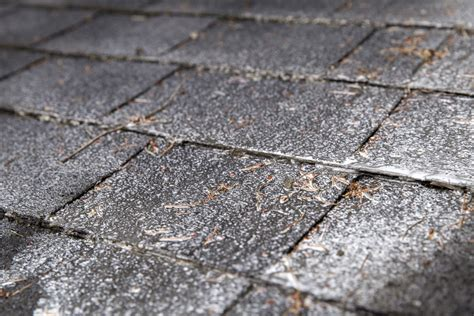How To Treat And Remove Moss From Your Roof Like A Corrugated Pvc Roofing Installation U S Metal American Supply Denver Colorado Concrete Tile Roof Vs Asphalt Shingles Red Plus Knoxville West Cedar Bluff Tn Andersen Window Warranty Coastal Rockledge Fl Carrier For Car