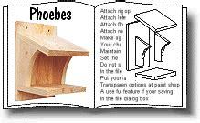 nesting box phoebes robins thrushes journaling nature pinterest nesting boxes bird