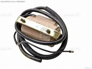 Honda S65 Sport 1965 Usa Wire Harness