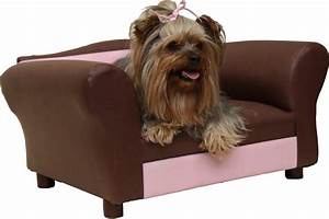 small dog sofa luxury small dog couch 70 in living room With dog couches for small dogs
