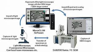 Hitachi High-Tech and RIKEN Launch MirrorCLEM System for ...