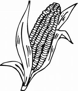 Colorwithfun.com - Corn Cob Coloring Page Pictures ...