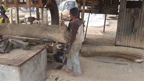 tough dangerous sawmill   year wood cutting