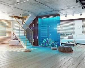 How To Properly Set Up An Aquarium In Your House  10 Steps