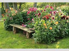 Outdoor Backyard Flowers Nice Decor Backyard Flowers