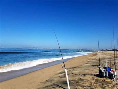 fishing surf gear beach fish california reading florida catch perch southern lures