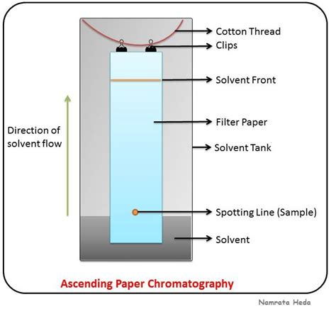 Chromatography Paper B For Biology Chromatography Paper Chromatography