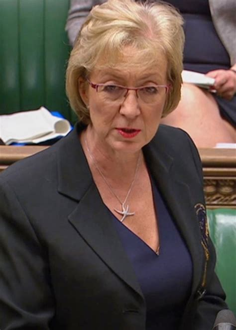 Business Secretary Andrea Leadsom offers to give evidence ...