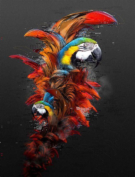 beautiful illustrations  photoshop artists