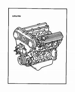 1993 Toyota T100 Hose  Water By-pass  No  3  Engine - 1626765011