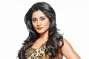 Here's why Rimi Sen entered the 'Bigg Boss 9' house ...  Rimi