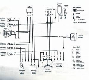 Eton 4 Wheeler Schematic
