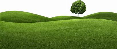 Clipart Hills Lawn Grass Transparent Tree Irpinia