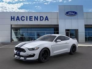 2019 Ford Mustang Shelby GT350 in Edinburg, TX near McAllen, Incentives, Rebates, Specials ...