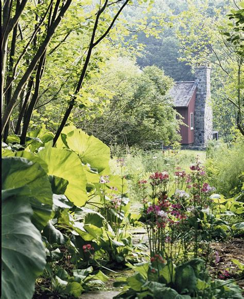 a garden to grow in going green at mill traditional