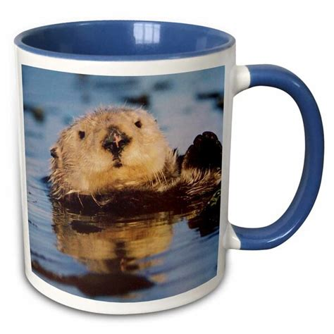 The menagerie module mixes common objects from the conway's life universe. World Menagerie Ozan Ollie Otter Coffee Mug | Wayfair