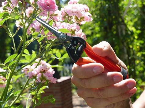 Garten Primus Stiklingesaks  Hartving Aps