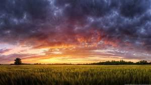 Clouds DeviantART Fields Grass Hungary Multicolor Nature ...
