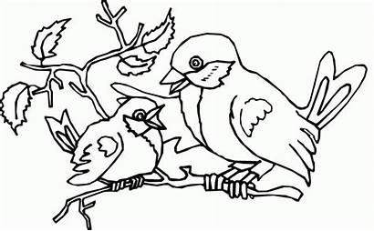 Coloring Bird Nest Pages Popular