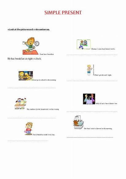 Write Sentences Simple Present Academia