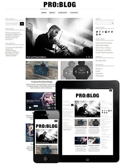 pro blog wordpress theme  wordpress themes