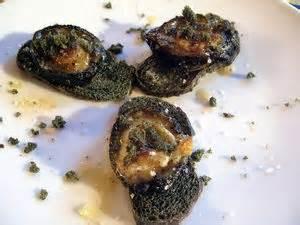 cuisiner les ormeaux ormeaux et au plancton cuisine de la mer