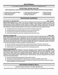 pricing analyst resume example sample of professional With resume prices