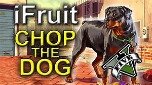iFruit App - Chop The Dog : GRAND THEFT AUTO 5 - iPhone ...