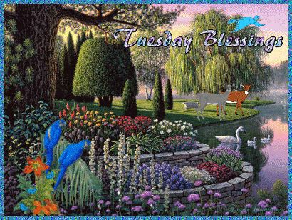 tuesday blessings pictures   images