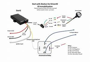 Dart Wiring Diagrams   Digital Matter Support