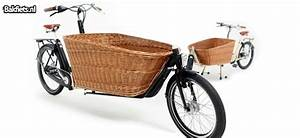 Hundekorb Fahrrad Hinten : fahrrad hundekorb modernes wohndesign ~ Jslefanu.com Haus und Dekorationen