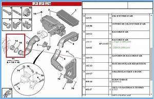 Peugeot 206 207 307 308 407 Expert Partner 1 6 Hdi Turbo