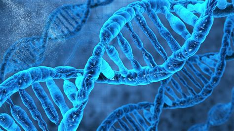 How You Can Change Your Dna