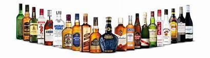 Pernod Ricard Cambodia Liquor Brands Wholesale Profit