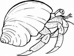 Crab clipart coloring page - Pencil and in color crab ...