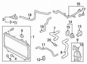 Mazda Protege Engine Coolant Bypass Hose  Cooling  Make