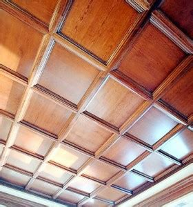 how to clean suspended ceiling panels local services